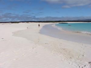 Galapagos_Beach2